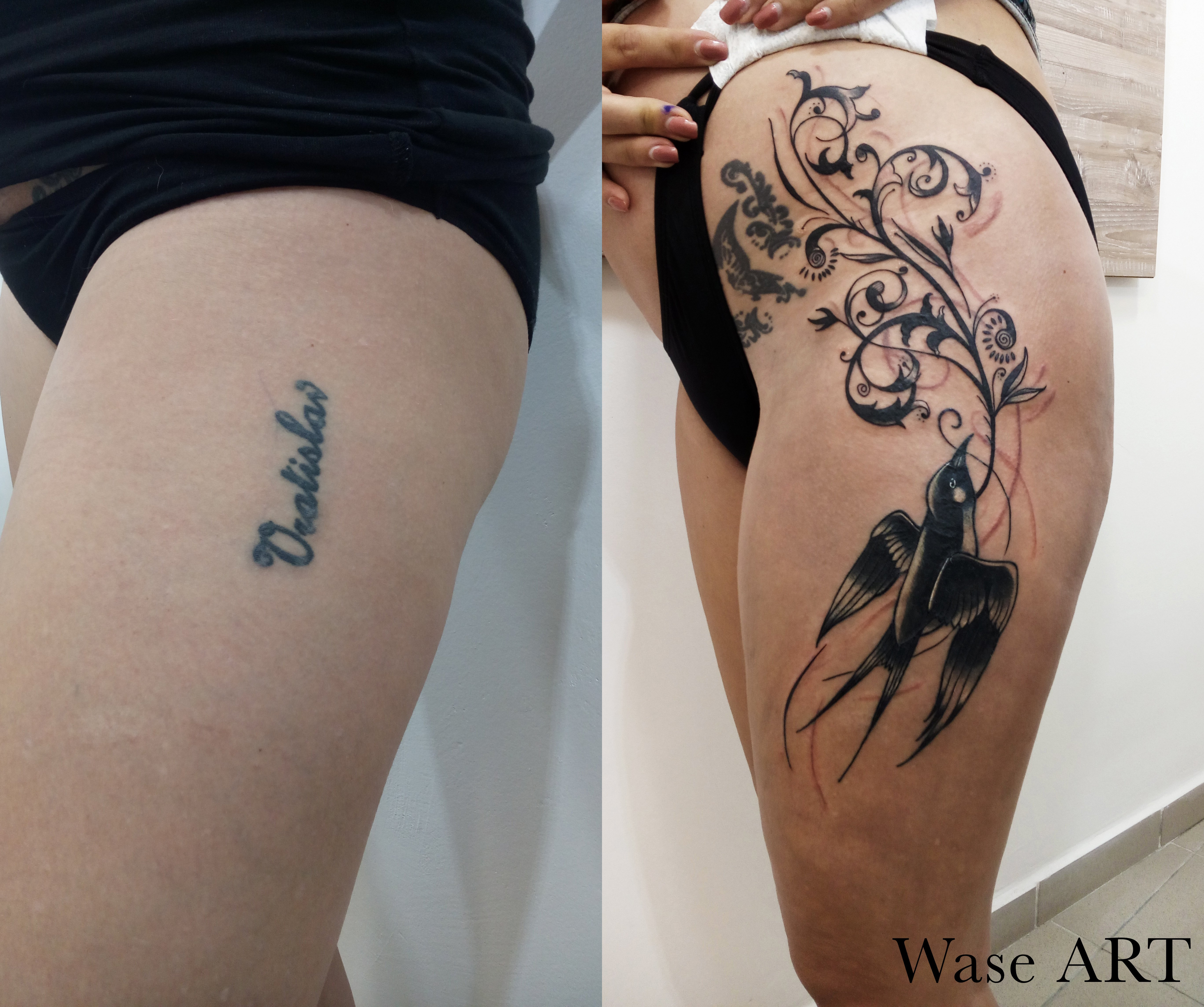 wase cover up.jpg